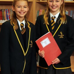 story writing winners