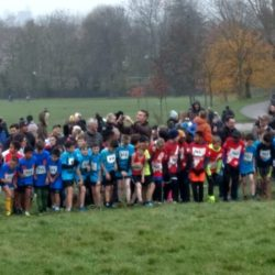 Cross Country at Parliament Hill