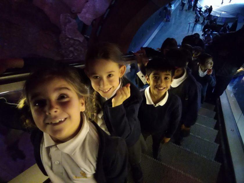 Chidlren in line in escalator