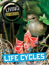 Life Cycles book cover