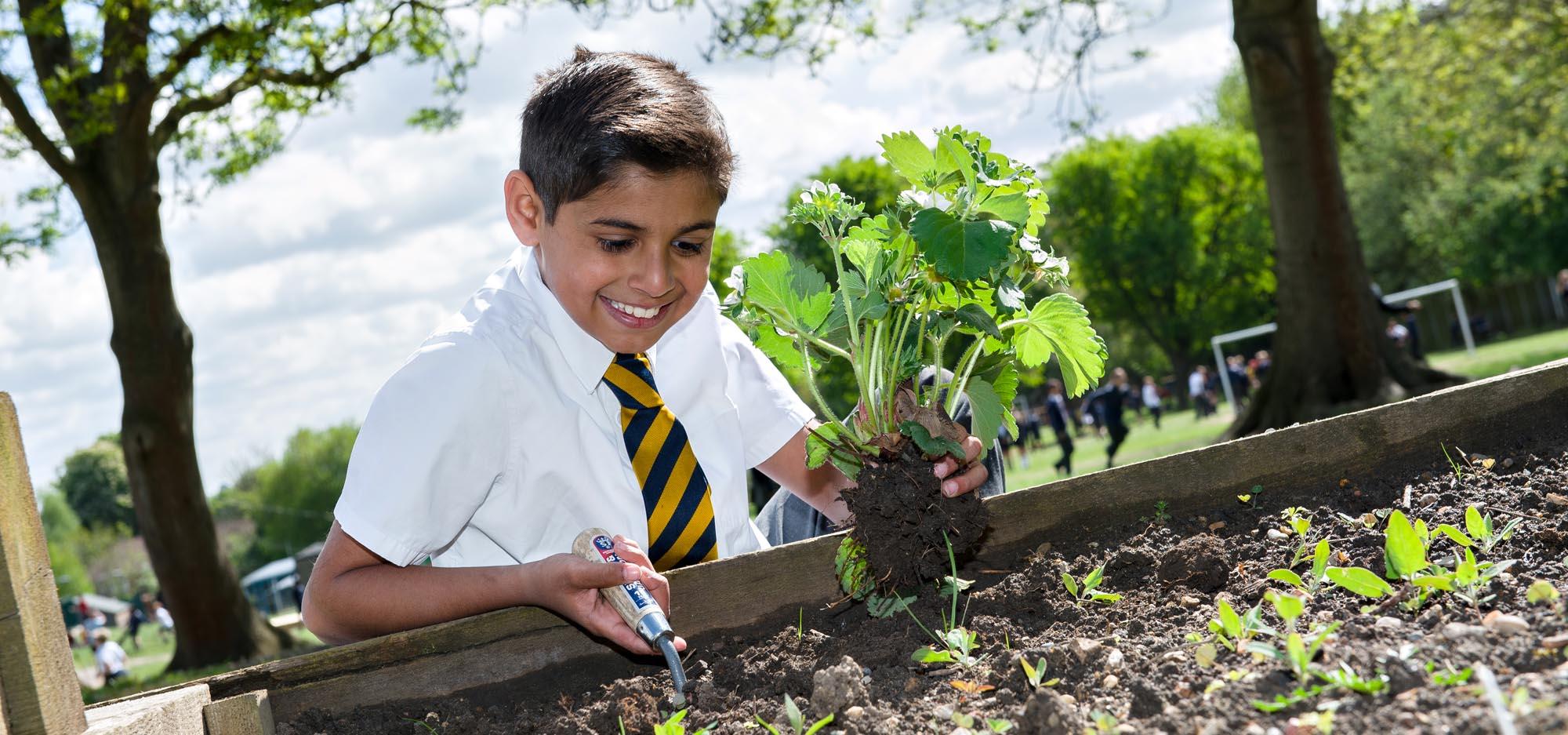 Boy planting plant